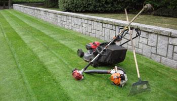mower rake grass